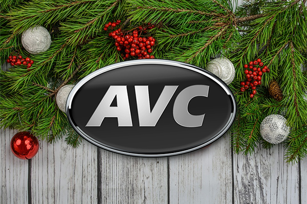 The very BEST type of Christmas gift for each day of December 2018 from AVC